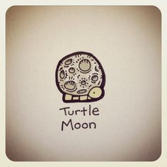 Turtle Moon #turtleadayjune - @turtlewayne- #webstagram