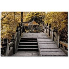 Trademark Fine Art Crossing Fall Canvas Art by Philippe Hugonnard, Size: 12 x 19, Assorted