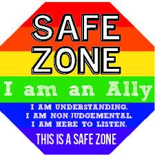 Image result for I am an ally images and this is a safe zone