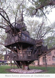 Treehouse in St Louis Park, MN. Mike and I saw this, I think its right off excelsior?