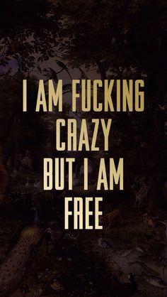 I am fucking crazy but I am free