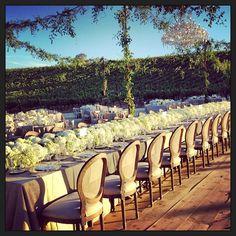 #hydrangearunner @discomf  @sarafayegan Events by Jackson Durham #jacksondurham #wedding #weddingflowers #floral #flowers #floraldesign #events #eventdesign #dfwevents