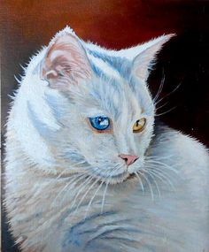 Cat portrait - Milky the cat from the animal rescue organisation. Oil painting.