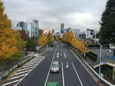 Autumn has come to the Jingu area in Tokyo.