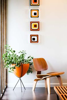 perfect little corner: natural light, geometric prints, molded plywood chair & overgrown succulent