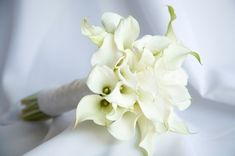 simple white bridal bouquet - Google Search