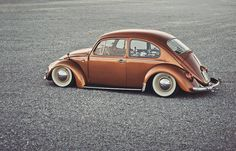this is what I want my bug to look like.