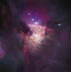 TrapeziumDK15-Center of Orion Nebula