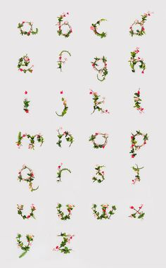 real flower font by anne lee via all the mountains...