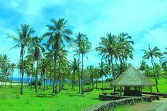 Кто встретит туриста на самом таинственном острове планеты