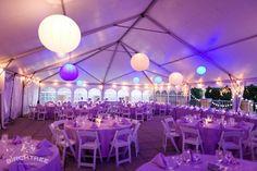 purple-teal-wedding-details07