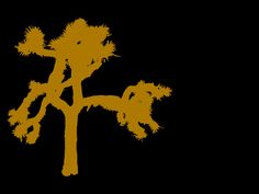 U2 Joshua Tree Wallpaper