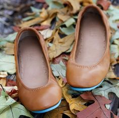 Chestnut Tieks ballet flats (So cute, want these for work shoes!)  Wish they were less expensive...