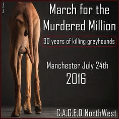 Greyhound March in Manchester, July 24, 2016.  (Paul Croes photo on the poster)