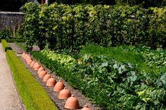 Gemüsegarten, West Dean