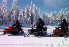 Laponie ... motoneige & traîneaux à chiens ... Team Building, Mountains, Snow Activities, Andorra, Ride Or Die, Dogs, Bergen