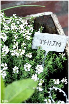 Bag End: Helteisiä vapaapäiviä White Gardens, Plantation, Kraut, Beautiful Gardens, Wild Flowers, In This Moment, Bags, Inspiration, Buckets