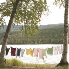 Clothesline at the lake