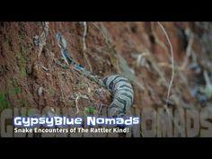 GypsyBlue Nomads: Season 1 Episode 6  Snake Encounters Of The Rattler Kind!