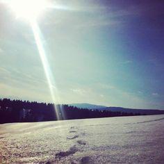 Neve montagna altopiano di asiago boschi sole snow mountains