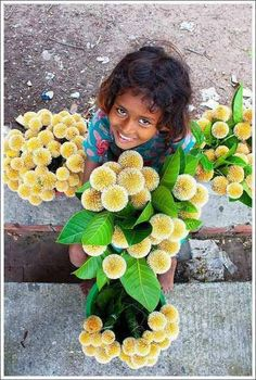 It is the saddle flower that sells it to all these poor children who lose their tongue