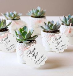 Wedding favors yourself: 37 original ideas with .-Gastgeschenke Hochzeit selber machen: 37 originelle Ideen mit Bildern make succulent wedding favors yourself - Wedding Favors And Gifts, Wedding Guest Gifts, Wedding Favours Unique, Wedding Table, Our Wedding, Rustic Wedding, Trendy Wedding, Dress Wedding, Spring Wedding