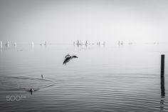 levitation - Lake Balton