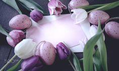 Ostergrüße / - Grüße an die liebsten, Hintergrund mit einem Tulpen arrangement und bunten Ostereiern. arrangement greetings to the favorite, background with tulips and colorful easter eggs.