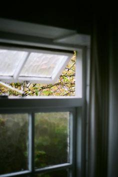 Transom open, rain or shine. #windows