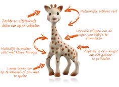 Sophie de Giraf is al een tijdje een hype. Maar waarom? En is deze hype terecht? Lees deze blog erover op http://everyday-life.nl #sophiedegiraf #sophie
