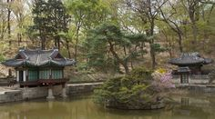 Chang Gyeong Gung Palace Secret Garden Seoul, Korea