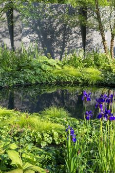 Latest Photos english garden pond Strategies Horticulture has been the best leisure activity so long as I'll remember. When I'm 10 years-old, My spouse and. Garden Pond Design, Bog Garden, Lake Garden, Garden Cottage, Garden Pool, Landscape Design, Garden Paths, Natural Swimming Ponds, Natural Pond