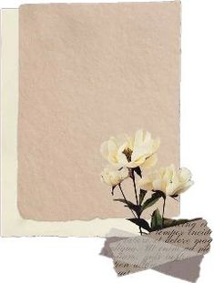 The Most Edited #papel in 2021 | Vintage flowers wallpaper, Paper background design, Dark wallpaper iphone