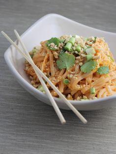 Spicy Vegetable Pad Thai Recipe - Little Leopard Book