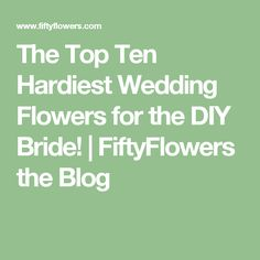 The Top Ten Hardiest Wedding Flowers for the DIY Bride! | FiftyFlowers the Blog