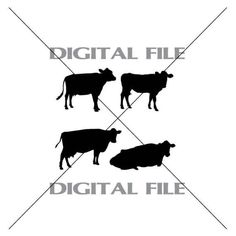 Four Cow Silhouettes Vector Images Vinyl by GuysAfterConception