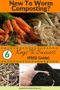 Are you new to worm composting? Our FREE GUIDE can get you started out right! Discover the 6 Keys to Success! Shoot us your email and we will send your FREE GUIDE right away. Organic Gardening Tips, Organic Fertilizer, Sustainable Gardening, Indoor Gardening, Red Wigglers, Red Worms, Worm Castings, Garden Compost, Vegetable Gardening