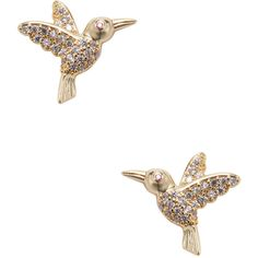 Tai Jewelry Women's Hummingbird Stud Earrings - Gold ($29) ❤ liked on Polyvore featuring jewelry, earrings and gold