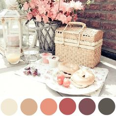 How to create a colour palette from your photographs using Picmonkey.  Love it!