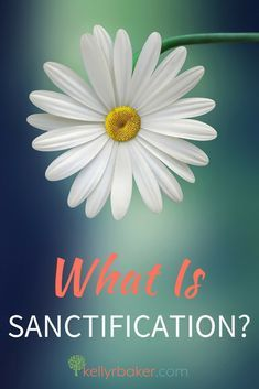 Some Christians think sanctification is invasive so they don't embrace it. But the more we look like Jesus, the more the world will see Him! There is much goodness that comes from sanctification. Here are five ways. #thrive #sanctification #biblicaltruths #spiritualgrowth #jesus