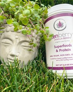 Our seasonal offering is here again. Spring/Summer organic berries, plant-based protein & superfoods in a delicious, refreshing smoothie. 15% off code: berry2020 #smoothie #vegan #proteinsmoothie Hemp Protein, Protein Blend, Plant Based Protein, Mesquite Powder, Athlete Nutrition, Organic Fruit, Vegan Foods, Superfoods, Athletes