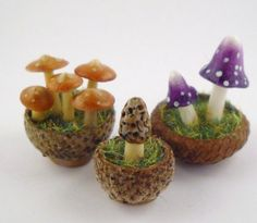 Small to Large Gift Idea: Pieces or a set of pieces for a miniature fairy garden, or a finished fairy garden (no actual fairies, please!)