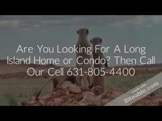 Dix Hills Long Island Real Estate | Call Lawrence and S