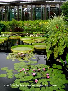 Longwood Gardens, Kennett Square, PA- just had family go on vacation here. So cool