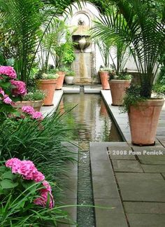 a rill, long pool, and wall fountain lengthen and focus the view -- A visit to Chanticleer: Hydrangeas & House Garden Digging Water Features In The Garden, Garden Features, Potted Palms, Potted Ferns, Landscape Design, Garden Design, Garden Fountains, Wall Fountains, Dream Garden