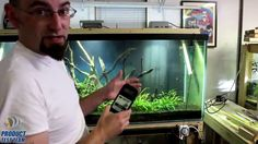 American Marine Pinpoint pH Monitor Review by Corvus Oscen - Marine Depot Product Test Team