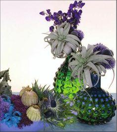 AquaCulture- Repinned by Beneva Flowers -Sarasota Florist