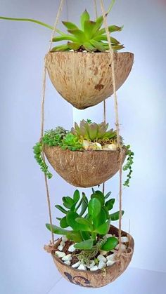 Flowerpot Handicaft by CoConut shell - Flowerpot made by coconut shell, plant mini flower, hook. Handicraft from coconut tree in Bến Tr - Diy Home Crafts, Garden Crafts, Garden Projects, House Plants Decor, Plant Decor, Hanging Plants, Indoor Plants, Coconut Shell Crafts, Coconut Flower