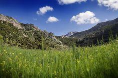 Majorca paradise.