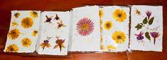 5 Tarjetas hechas con papel reciclado y material por CalCentelles